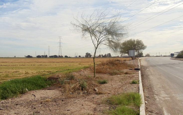 Foto de terreno comercial en renta en lazaro cardenas , gonzález ortega, mexicali, baja california, 1192105 No. 03