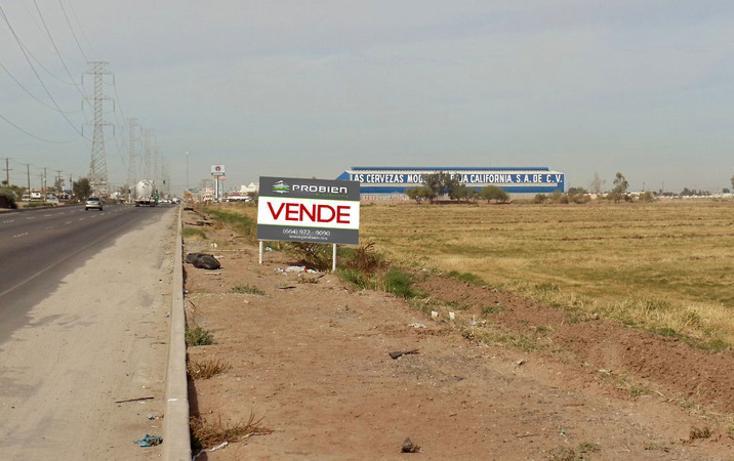 Foto de terreno comercial en renta en lazaro cardenas , gonzález ortega, mexicali, baja california, 1192105 No. 04