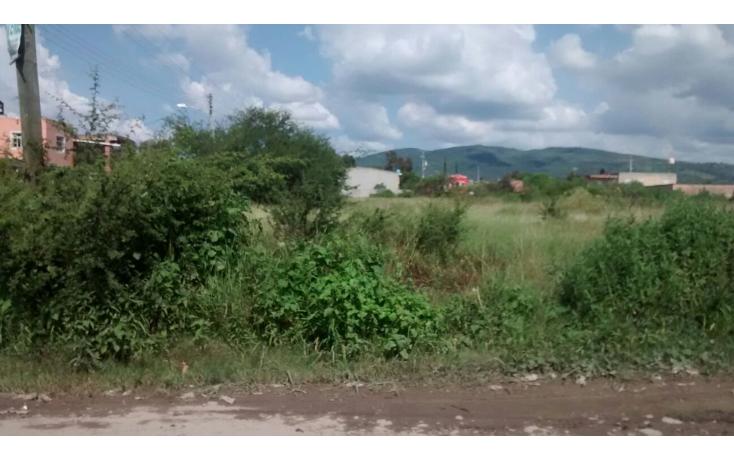 Foto de terreno habitacional en venta en  , lázaro cárdenas, ocotlán, jalisco, 1354725 No. 03