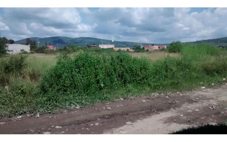 Foto de terreno habitacional en venta en  , lázaro cárdenas, ocotlán, jalisco, 1354725 No. 04