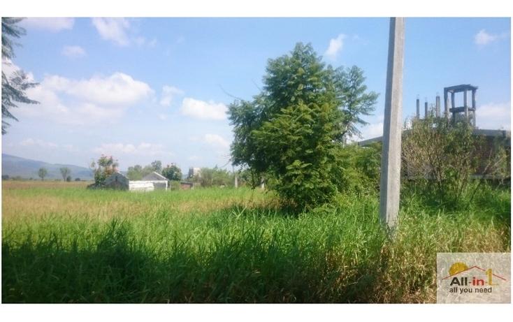 Foto de terreno habitacional en venta en lázaro cárdenas rumbo al cereso, fracción seis 6 , lázaro cárdenas, zamora, michoacán de ocampo, 1548966 No. 02