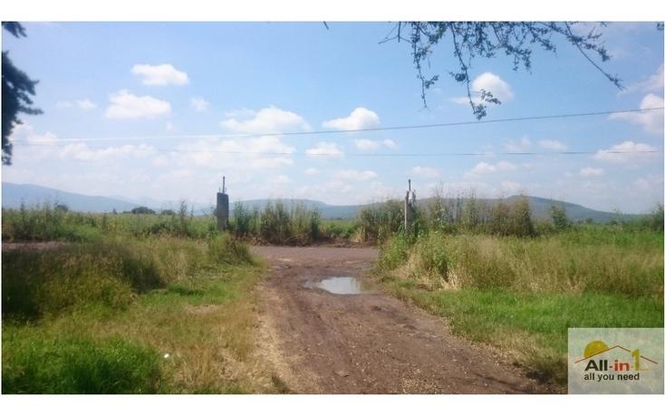 Foto de terreno habitacional en venta en lázaro cárdenas rumbo al cereso, fracción seis 6 , lázaro cárdenas, zamora, michoacán de ocampo, 1548966 No. 04