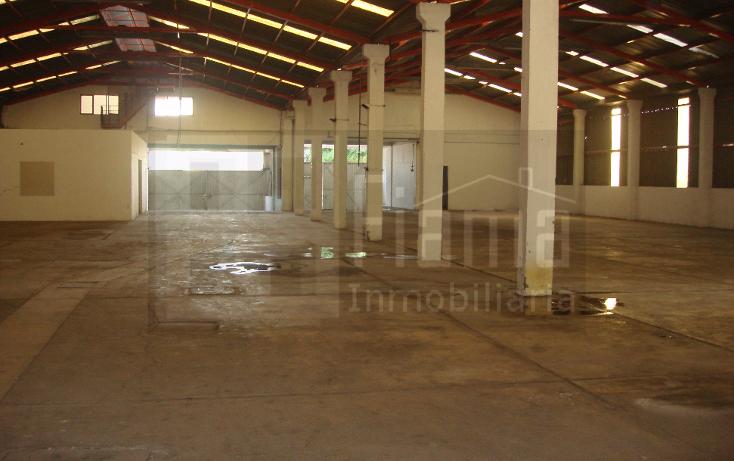 Foto de nave industrial en renta en  , lázaro cárdenas, tepic, nayarit, 1828720 No. 05
