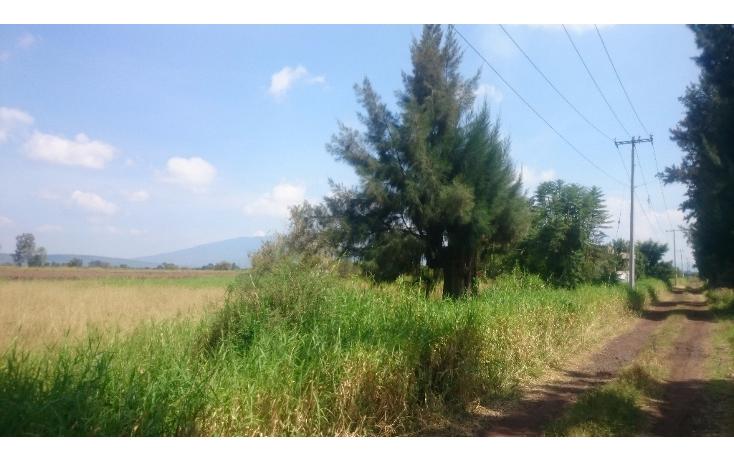 Foto de terreno habitacional en venta en  , lázaro cárdenas, zamora, michoacán de ocampo, 1460231 No. 01
