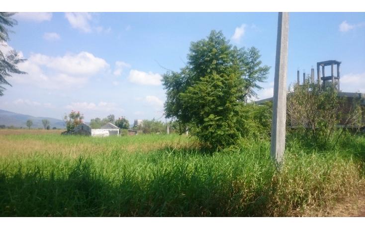 Foto de terreno habitacional en venta en  , lázaro cárdenas, zamora, michoacán de ocampo, 1460231 No. 02