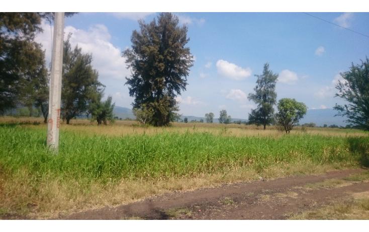 Foto de terreno habitacional en venta en  , lázaro cárdenas, zamora, michoacán de ocampo, 1460231 No. 03