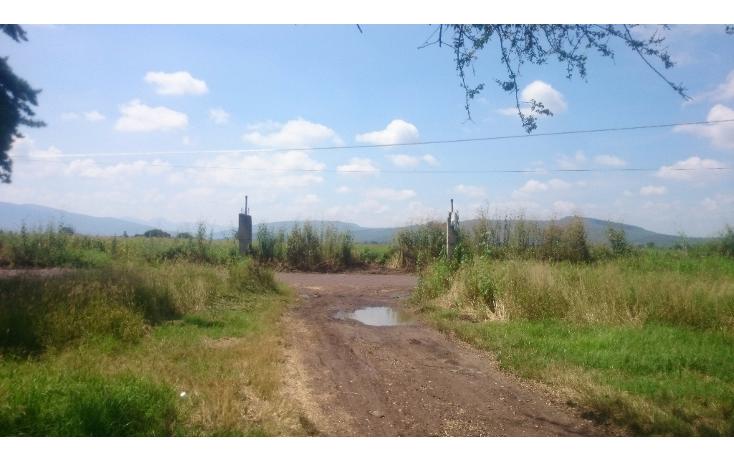 Foto de terreno habitacional en venta en  , lázaro cárdenas, zamora, michoacán de ocampo, 1460231 No. 04