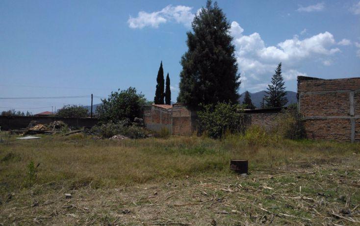 Foto de terreno habitacional en venta en leona vicario 00, mascota, ocotlán, jalisco, 1703630 no 02