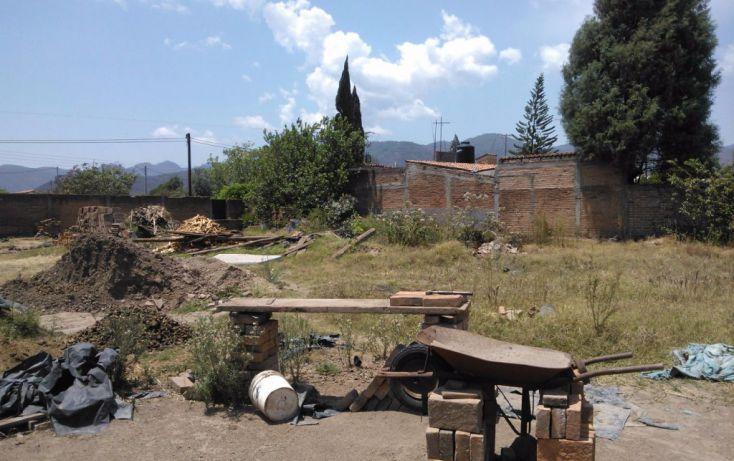 Foto de terreno habitacional en venta en leona vicario 00, mascota, ocotlán, jalisco, 1703630 no 03