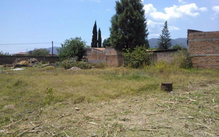 Foto de terreno habitacional en venta en leona vicario 00, mascota, ocotlán, jalisco, 1703630 no 04