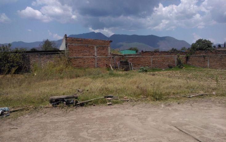 Foto de terreno habitacional en venta en leona vicario 00, mascota, ocotlán, jalisco, 1703630 no 05