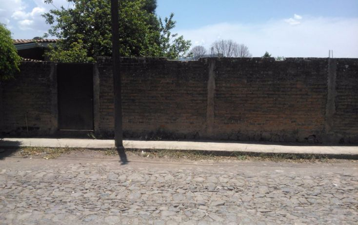 Foto de terreno habitacional en venta en leona vicario 00, mascota, ocotlán, jalisco, 1703630 no 06