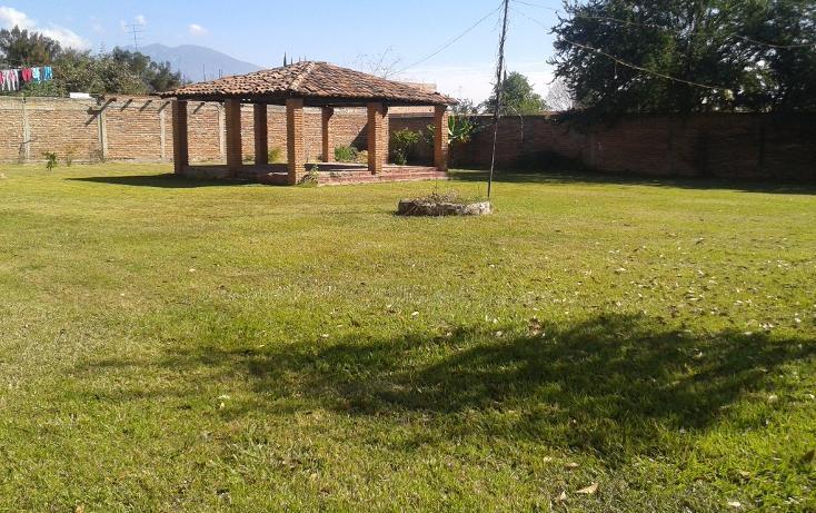 Foto de terreno habitacional en venta en  , ahualulco de mercado centro, ahualulco de mercado, jalisco, 1719734 No. 01