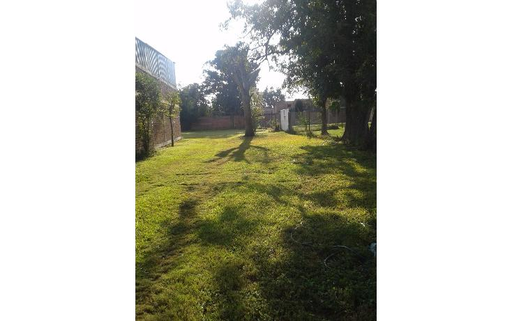 Foto de terreno habitacional en venta en  , ahualulco de mercado centro, ahualulco de mercado, jalisco, 1719734 No. 02