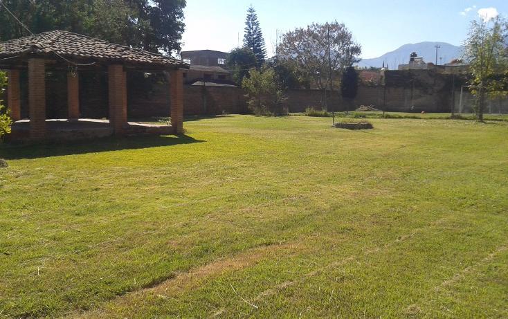 Foto de terreno habitacional en venta en  , ahualulco de mercado centro, ahualulco de mercado, jalisco, 1719734 No. 04
