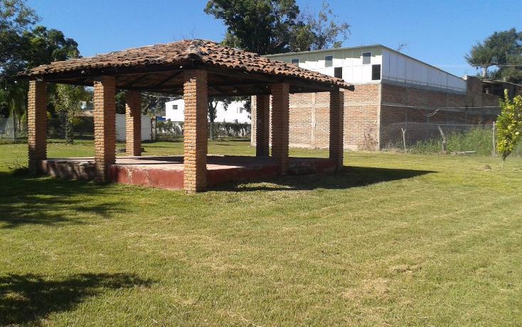 Foto de terreno habitacional en venta en  , ahualulco de mercado centro, ahualulco de mercado, jalisco, 1719734 No. 06