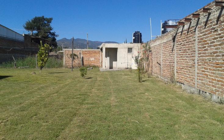 Foto de terreno habitacional en venta en  , ahualulco de mercado centro, ahualulco de mercado, jalisco, 1719734 No. 08