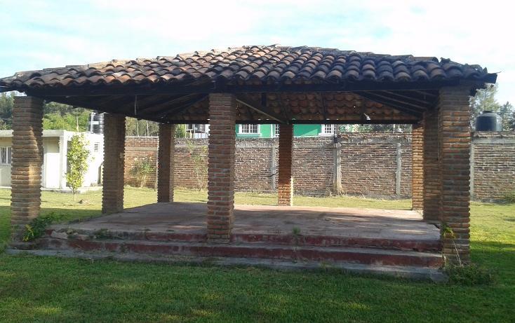 Foto de terreno habitacional en venta en  , ahualulco de mercado centro, ahualulco de mercado, jalisco, 1719734 No. 14