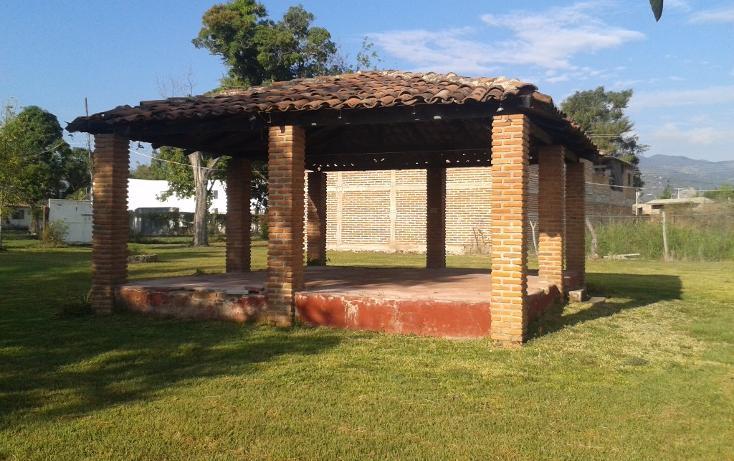 Foto de terreno habitacional en venta en  , ahualulco de mercado centro, ahualulco de mercado, jalisco, 1719734 No. 15