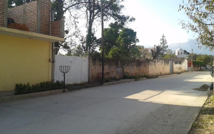Foto de terreno habitacional en venta en  , ahualulco de mercado centro, ahualulco de mercado, jalisco, 1719734 No. 19