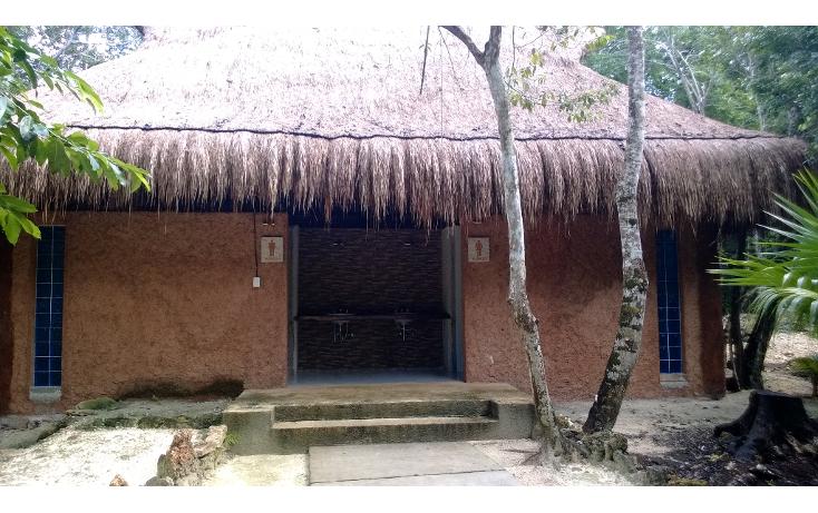 Foto de terreno habitacional en venta en  , leona vicario, benito juárez, quintana roo, 1115219 No. 11