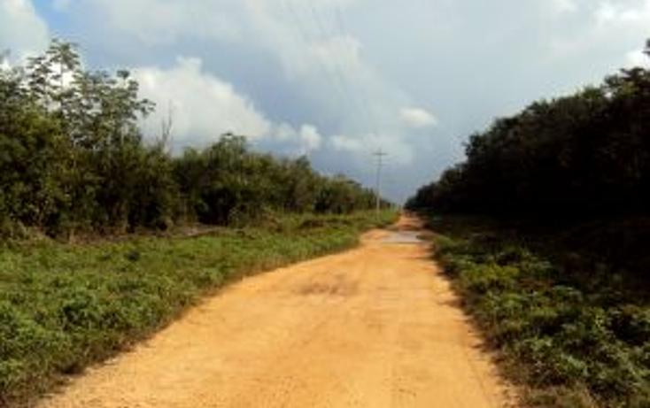Foto de terreno comercial en venta en  , leona vicario, benito juárez, quintana roo, 1266687 No. 05