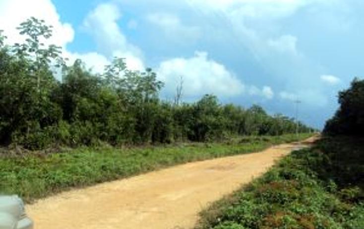 Foto de terreno comercial en venta en  , leona vicario, benito juárez, quintana roo, 1266687 No. 07