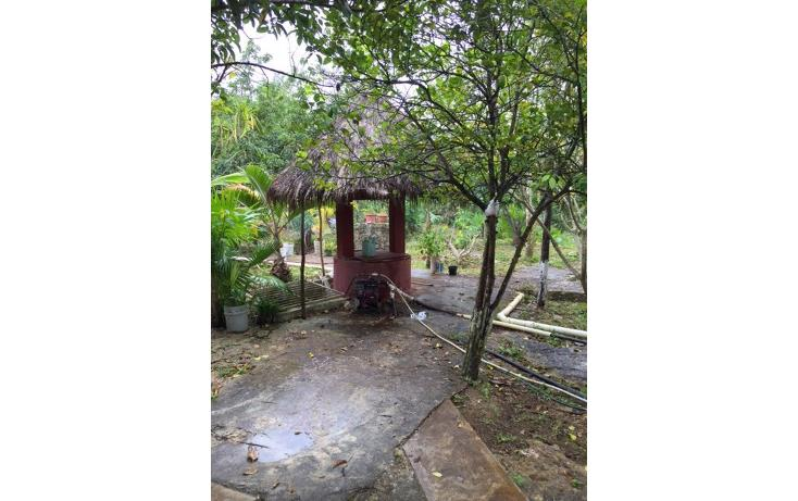 Foto de rancho en venta en  , leona vicario, benito juárez, quintana roo, 1305811 No. 01