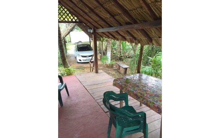Foto de rancho en venta en  , leona vicario, benito juárez, quintana roo, 1305811 No. 06