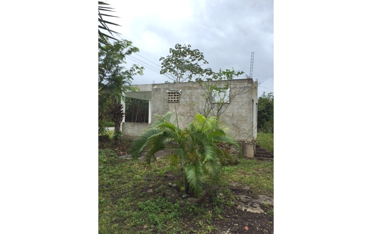 Foto de rancho en venta en  , leona vicario, benito juárez, quintana roo, 1305811 No. 08