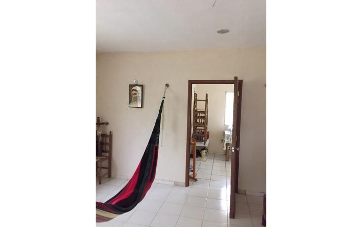 Foto de rancho en venta en  , leona vicario, benito juárez, quintana roo, 1305811 No. 09