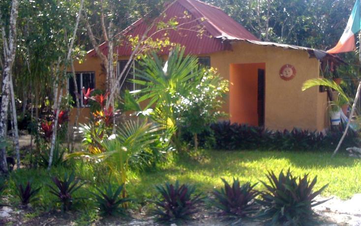 Foto de terreno habitacional en venta en  , leona vicario, benito juárez, quintana roo, 1621354 No. 01
