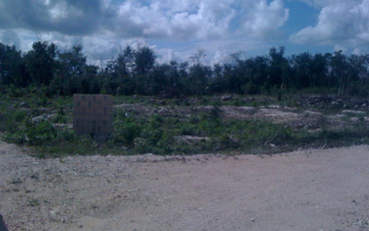 Foto de terreno habitacional en venta en  , leona vicario, benito juárez, quintana roo, 1621354 No. 04