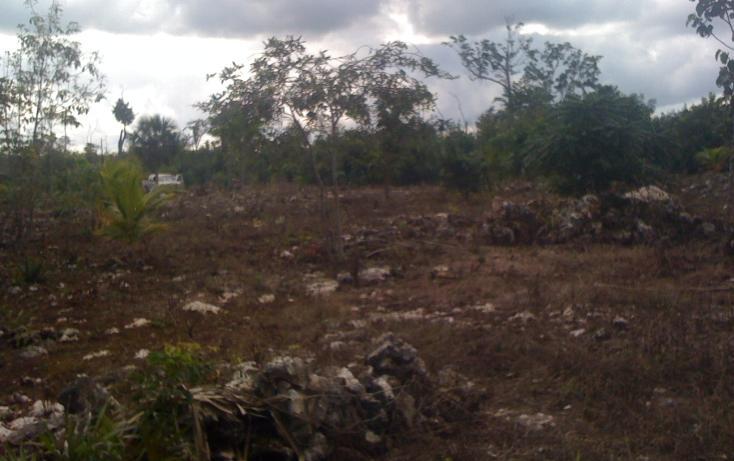 Foto de terreno habitacional en venta en  , leona vicario, benito juárez, quintana roo, 1621354 No. 05