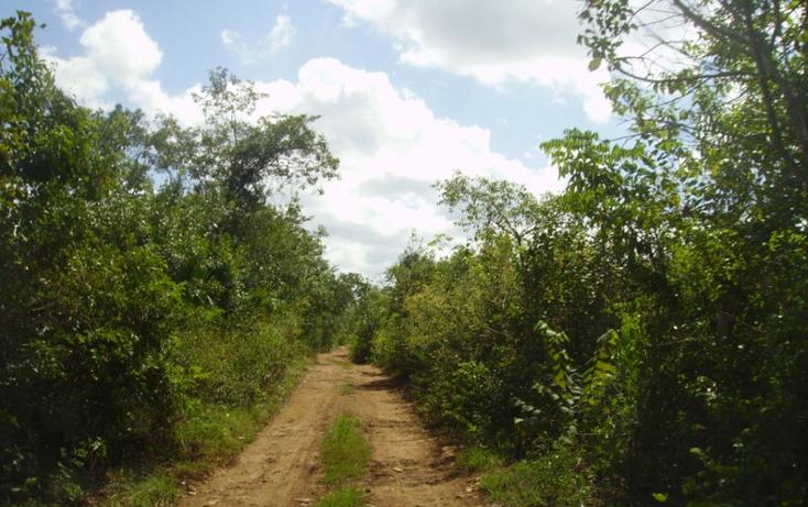 Foto de terreno comercial en venta en  , leona vicario, othón p. blanco, quintana roo, 1852408 No. 03