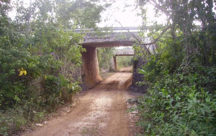 Foto de terreno comercial en venta en  , leona vicario, othón p. blanco, quintana roo, 1852408 No. 04