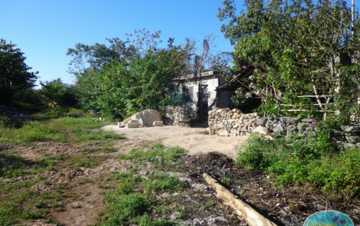 Foto de terreno habitacional en venta en  , leona vicario, othón p. blanco, quintana roo, 1856670 No. 01