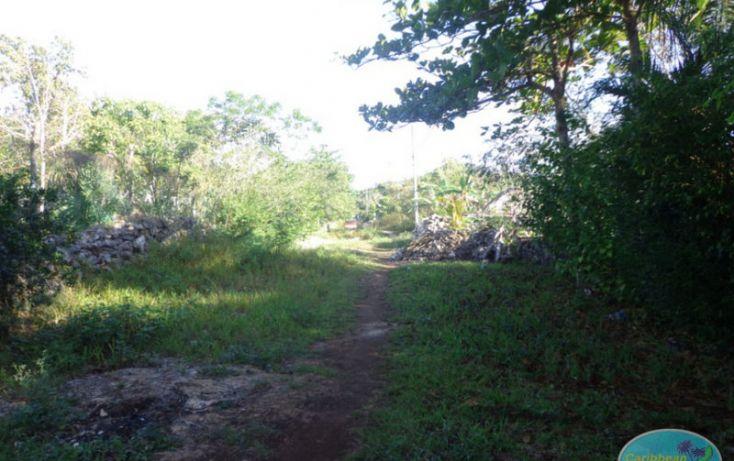 Foto de terreno habitacional en venta en, leona vicario, othón p blanco, quintana roo, 1856670 no 02
