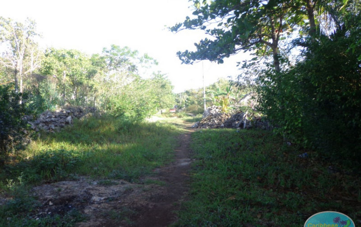 Foto de terreno habitacional en venta en  , leona vicario, othón p. blanco, quintana roo, 1856670 No. 02
