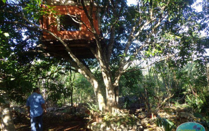 Foto de terreno habitacional en venta en, leona vicario, othón p blanco, quintana roo, 1856670 no 04