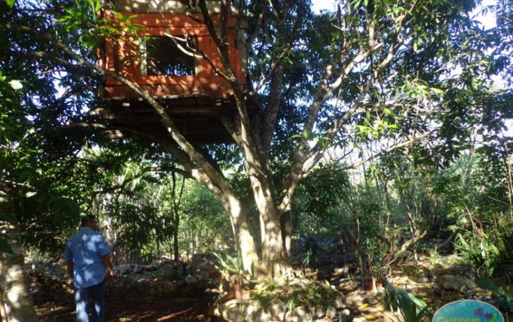 Foto de terreno habitacional en venta en  , leona vicario, othón p. blanco, quintana roo, 1856670 No. 04