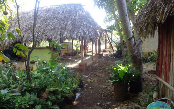 Foto de terreno habitacional en venta en, leona vicario, othón p blanco, quintana roo, 1856670 no 05