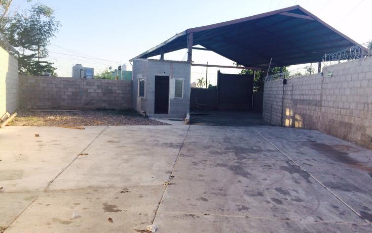 Foto de terreno comercial en renta en  , ley 57, hermosillo, sonora, 1185593 No. 08