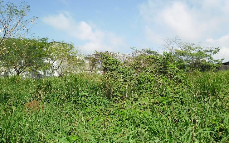 Foto de terreno comercial en venta en  , lic. luis echeverría álvarez, coatzacoalcos, veracruz de ignacio de la llave, 1140681 No. 07