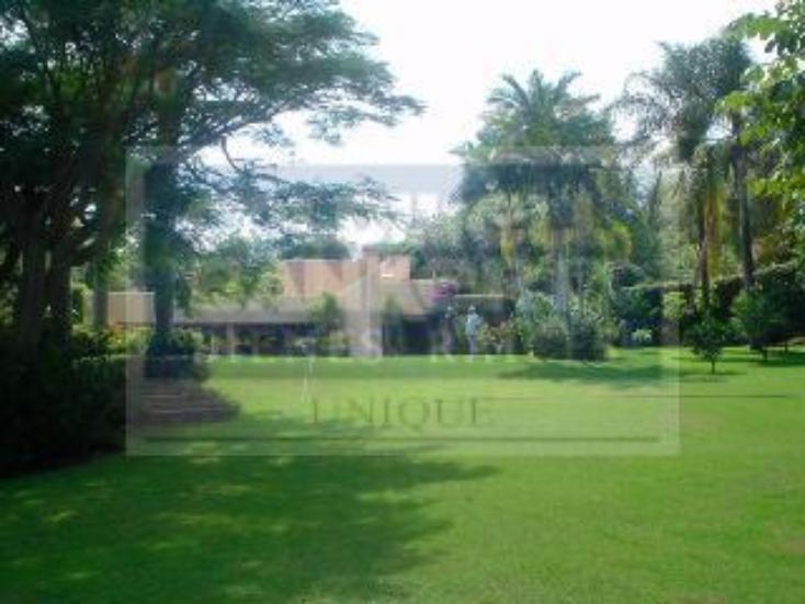 Foto de casa en venta en  , los limoneros, cuernavaca, morelos, 345642 No. 03