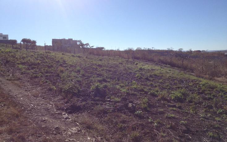 Foto de terreno habitacional en venta en  , linda vista, berriozábal, chiapas, 1452227 No. 04