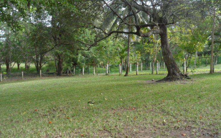 Foto de terreno habitacional en venta en, lindavista, pueblo viejo, veracruz, 1302681 no 02
