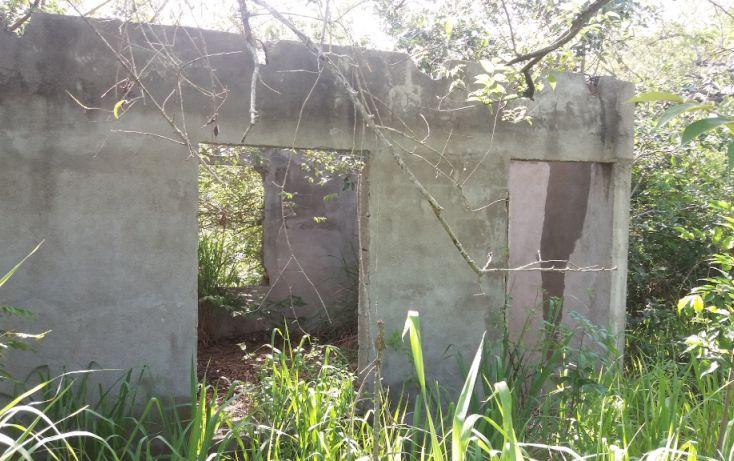 Foto de terreno habitacional en venta en, lindavista, pueblo viejo, veracruz, 2019524 no 03