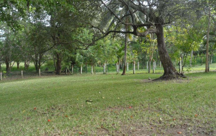 Foto de terreno habitacional en venta en, lindavista, pueblo viejo, veracruz, 943667 no 03