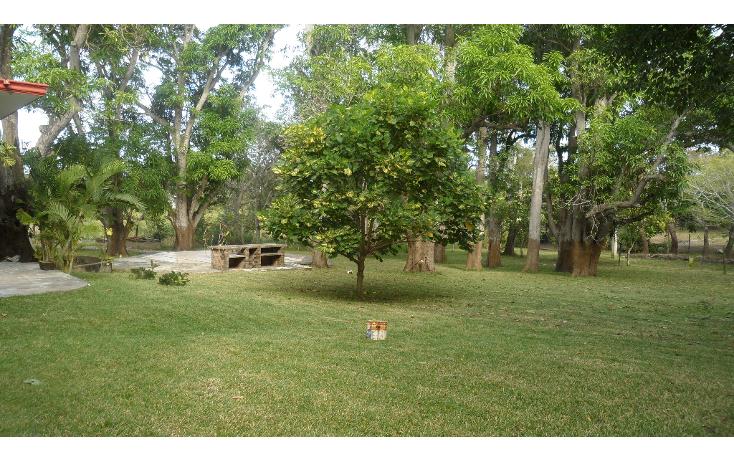 Foto de casa en venta en  , lindavista, pueblo viejo, veracruz de ignacio de la llave, 1076645 No. 06